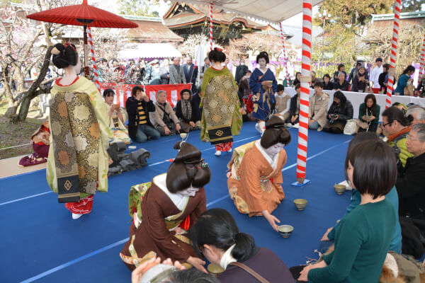 The ancient plum festival performed with Maiko from the nearby Geisha district.